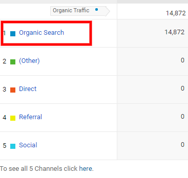 Google Analytics - drill down to see organic search traffic